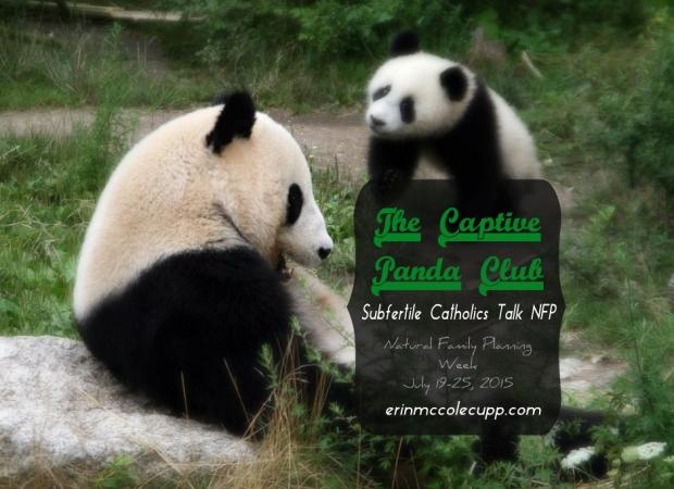 The Captive Panda Club: Subfertile Catholics talk Natural Family Planning During NFP Week