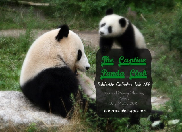 The Captive Panda Club: Subfertile Catholics talk Natural Family Planning During NFP Week