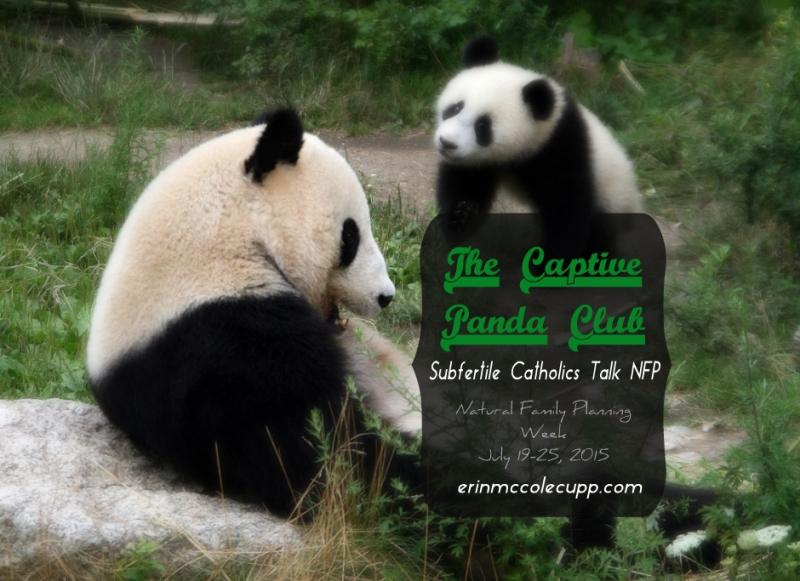 Panda Forum
