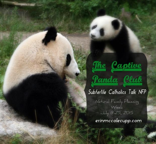 Captive Panda Club at erinmccolecupp.com